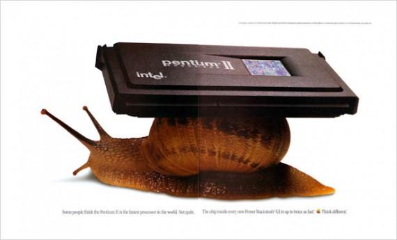 1998 snail
