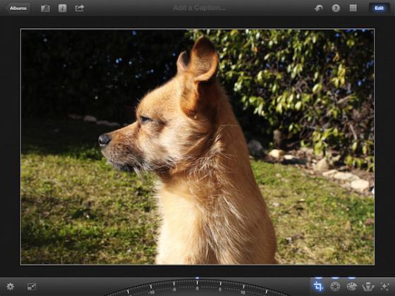 Обзор iPhoto для iOS